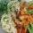 Quinoa – köret lecsóhoz